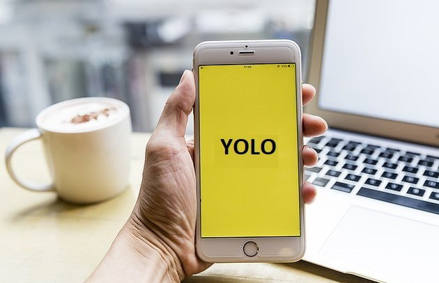 Yolo Android apk